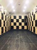 Immagazzinamento in impermeabile di plastica l'armadio dell'ABS per il centro di sauna