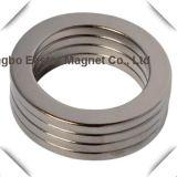 Magneet van de Ring van het Neodymium van de zeldzame aarde de Permanente met het Plateren van het Nikkel