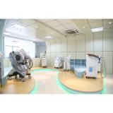 Corps de la cavitation rf de laser de Lipo amincissant la machine HS-700e de beauté de forme de corps