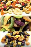 Linha de produção deliciosa das microplaquetas dos frutos secos e da fruta na operação automática cheia