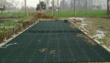 Lastricatori di griglia dell'erba di griglia della ghiaia dell'HDPE per la strada privata
