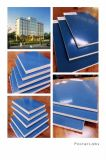Blauer Plastikfilm stellte Furnierholz für Aufbau und Gebäude gegenüber