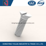 Aço inoxidável Slotted Flat Countersunk Head Machine Screw