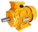 Электрический двигатель индукции высокой эффективности Ie2 Ie3 (YE2/YE3-90-280)