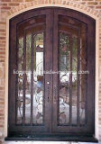 Handgemachte schöne dekorative Eisen-Vorderseite-Bronzen-Tür