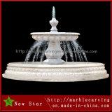 Fonte de água ao ar livre barata de Martblecarving para a decoração (NS-249)