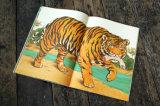 Prix bon marché d'approvisionnement d'impression de la Chine de bande dessinée de gosses de livre pour enfant