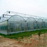 필름 온실, 농업 온실, 상업적인 온실