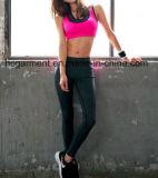 여자 Yoga 바지, 체조 또는 Sports 착용, 체조 각반, 살짝 미는 한 벌