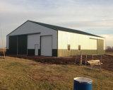 Berufsentwurfs-lang - Überspannungs-strukturelles Stahlgebäude
