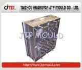 Molde da caixa das cavidades da alta qualidade 2 do OEM