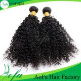 すべての質7Aの等級のバージンのブラジルの人間のRemyの毛のかつら