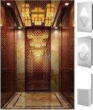 快適なおよびMagnificant車が付いているホテルのエレベーター