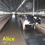Matting do cavalo da vaca/Matting estável de borracha da esteira/borracha da agricultura