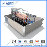 판매를 위한 Hengyin 돼지에 의하여 직류 전기를 통하는 새끼를 낳는 크레이트