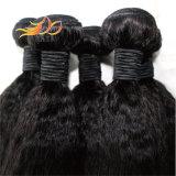 最上質のねじれたまっすぐなペルーのバージンの人間の毛髪の織り方