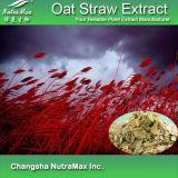 Extrait naturel de paille d'avoine de 100% (8 : 1, 10 : 1)