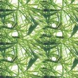 Nueva película de inmersión hidráulica P709-1 de la impresión de la transferencia del agua de la película PVA de Filmhydrographic de los modelos de flores de la anchura de Tsautop los 0.5m/1m de la llegada