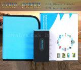 Qualitäts-Sprung-Anfangsbatterieleistung-Bank Sr-22e
