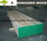 El Osha irradia la madera del LVL del pino para la construcción