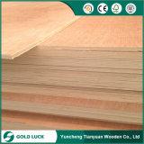 madeira compensada filipino do mercado de 3.6mm e de 4.5mm, madeira compensada comercial da folhosa vermelha, madeira compensada barata para a venda