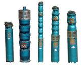 Pompa ad acqua verticale agricola di irrigazione del pozzetto del pozzo profondo dell'azienda agricola sommergibile