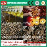 Prezzo freddo della macchina di estrazione dell'olio del nocciolo di palma della pressa