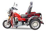 70/110cc障害がある三輪車または3つの車輪のオートバイ(DTR-4)