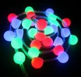 Illuminazione commovente flessibile di natale del segno del nastro LED di DC24V RGBW LED