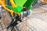 Bike pubblico Single Locking Device (nuovo reticolo)
