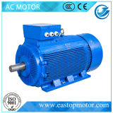 Motor der Pumpen-Y3 für Metallurgie mit Aluminium-Stab Läufer