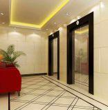 Levage d'ascenseur de passager à C.A./acier inoxydable