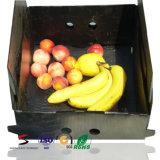 As frutas e verdura corrugaram a caixa do empacotamento plástico