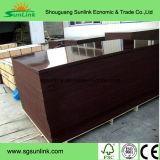 Contre-plaqué Shuttering de construction de contre-plaqué de contre-plaqué de Concret