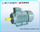Le3 (YE2) motore a corrente alternata Elettrico di induzione di alta efficienza di serie (GB3 IE2)