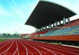 Respetuoso del medio ambiente sintético PU Pista de atletismo con el certificado Iaaf