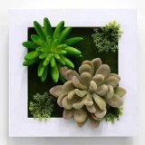 녹색 벽 구 Wall00989090012의 고품질 인공적인 플랜트 그리고 꽃