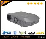 극화된 3D Glasses Fashionable Home Theater Projectors LED
