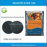Organisches Meerespflanze-Auszug-Biodüngemittel