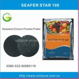 海藻肥料の片状粉(藻WS100)