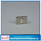 Magnete del neodimio