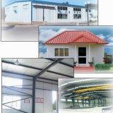 De Bouw van de Structuur van het staal/de Structuur van het Staal/Geprefabriceerd huis (ssw-35)