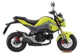 China Motocicleta 125cc, 2016 Msx 125