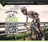 Intelligente Auslegung-elektrisches faltendes Fahrrad