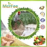 Fertilizzante solubile in acqua dell'heptaidrato del solfato di magnesio della fabbrica