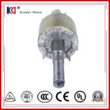 Il motore (elettrico) elettrico protetto contro le esplosioni di CA di Yb2 Yb3 con personalizza la tensione