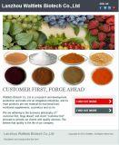 Fabrik-Zubehör-Qualität Salicin 20%-98% Weide-Barke-Auszug