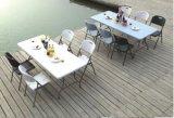 таблица в Европ, пластичная половинная складывая таблица 6FT самая лучшая продавая HDPE, напольный складной столик