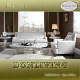 Nuevo sofá de cuero clásico en los muebles (A24)