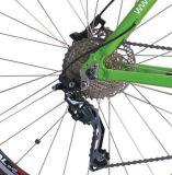 [250و] [ميد-نجند] محرّك [لي-يون] قوة درّاجة كهربائيّة ([لن28ك14])
